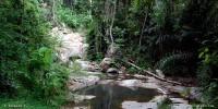 Zong Ruea Waterfall (น้ำตกซองเรือ)
